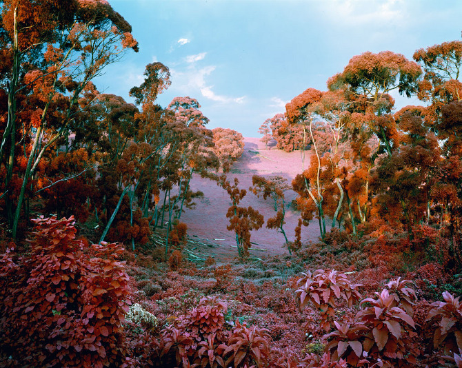 The enclave, 2012-13 © Richard Mosse